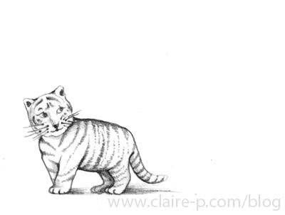 baby-tiger.jpg
