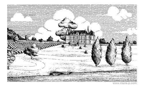 chateau-vignes